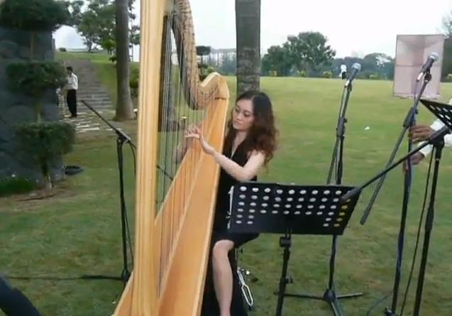 Harp Performances 1