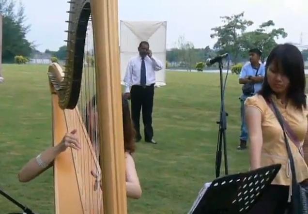 Harp Performances 2