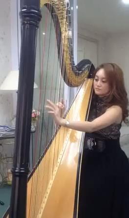 Harp Performances 3