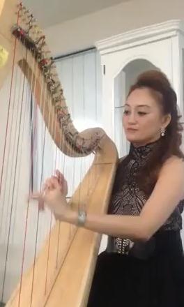 Harp Performances 4