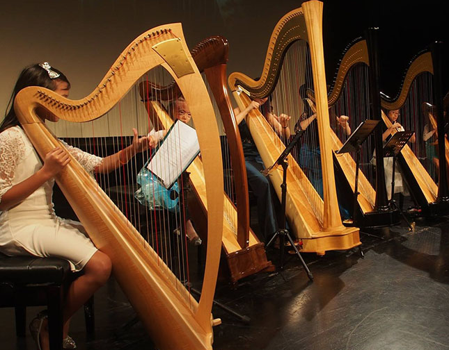 The Harp Academy, Harp Sydney, Harp Australia, Group performances