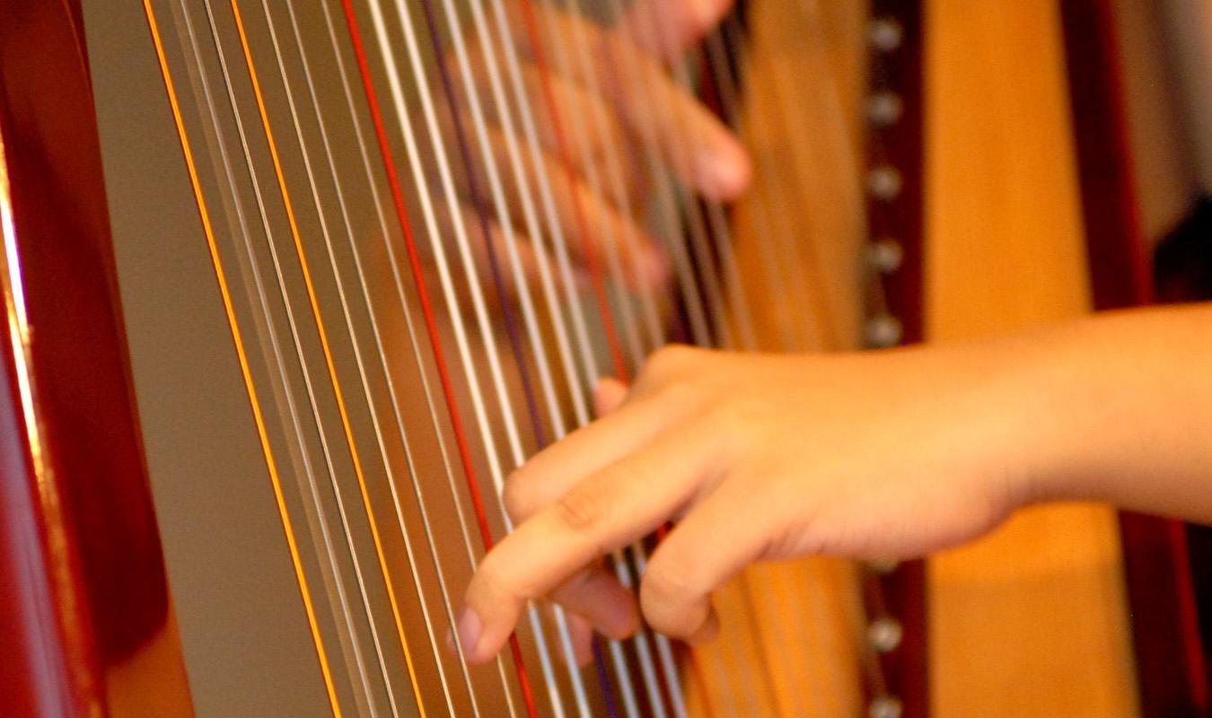 Harp Journey 2