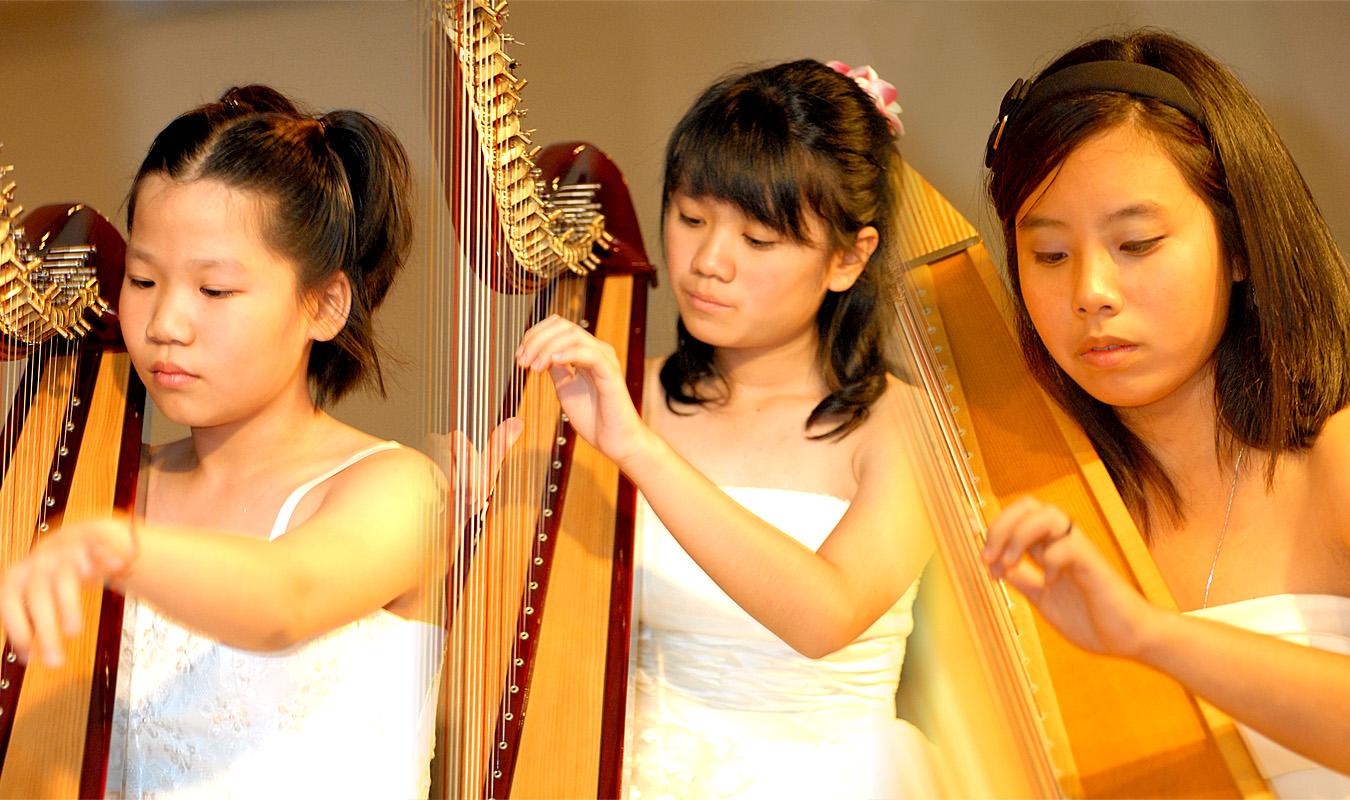 Harp Journey 3
