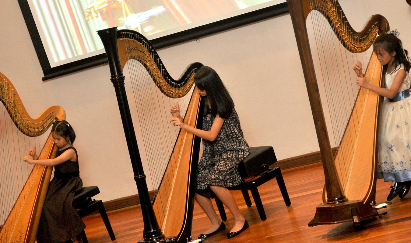 Harp Journey 6
