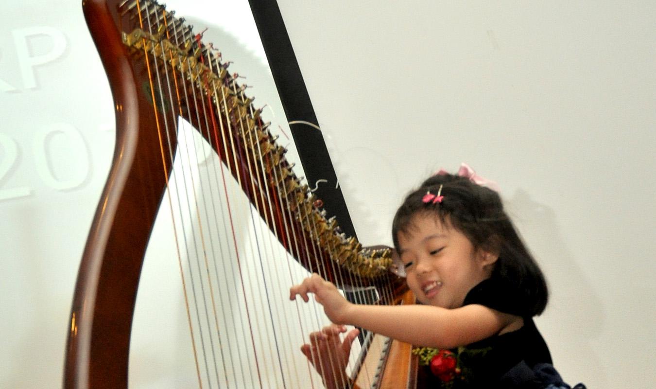 Harp Journey 5
