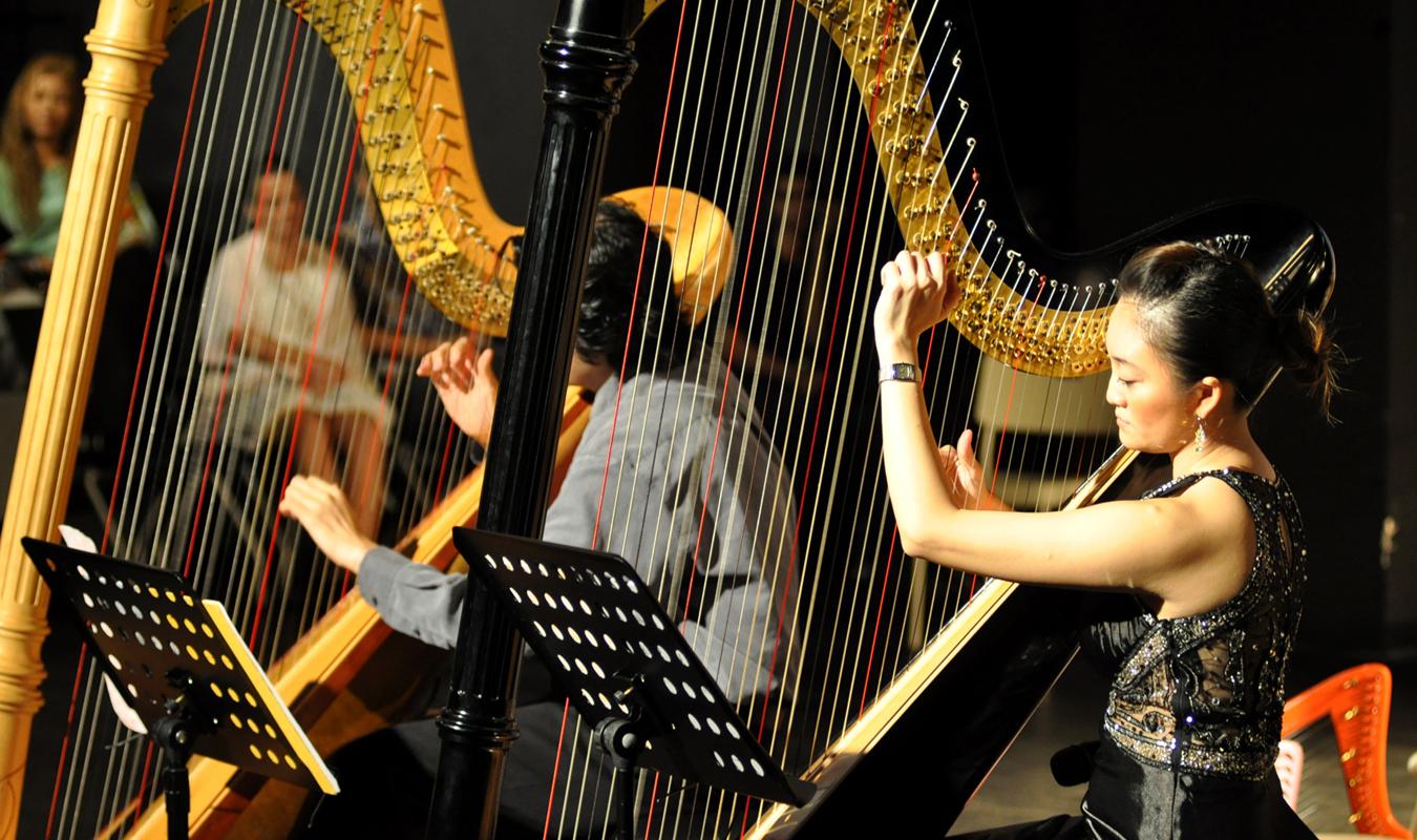 Harp Journey 8