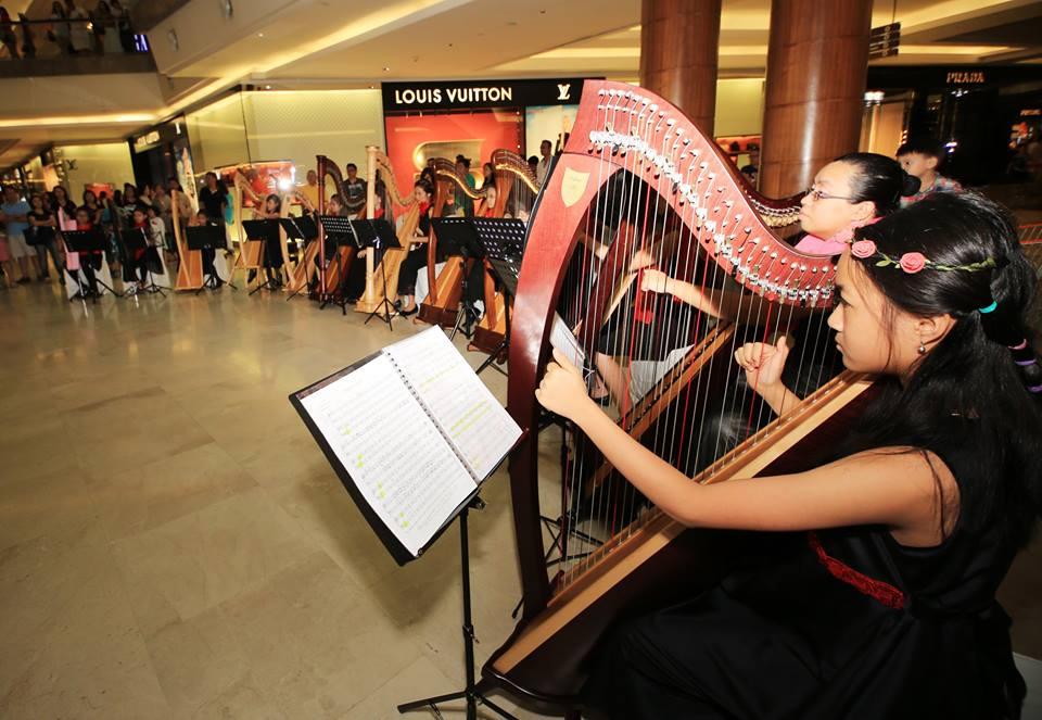 Harp Journey 12