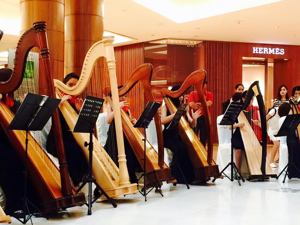 Harp Journey 11