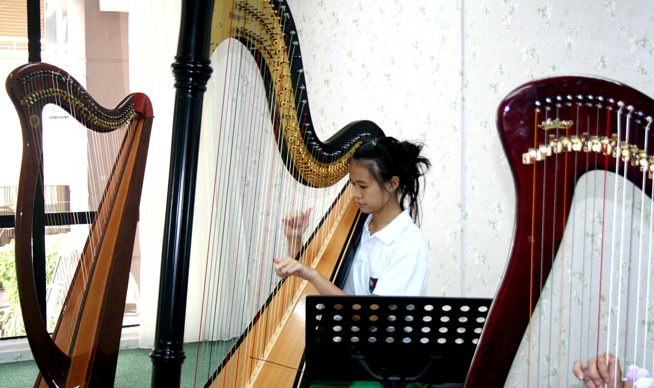 Harp Journey 13