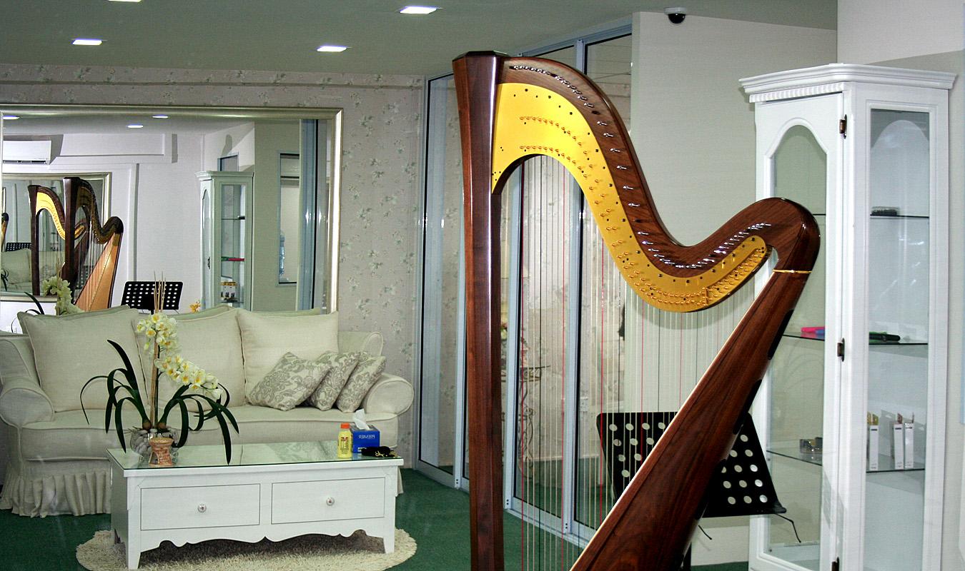 Harp Journey 14