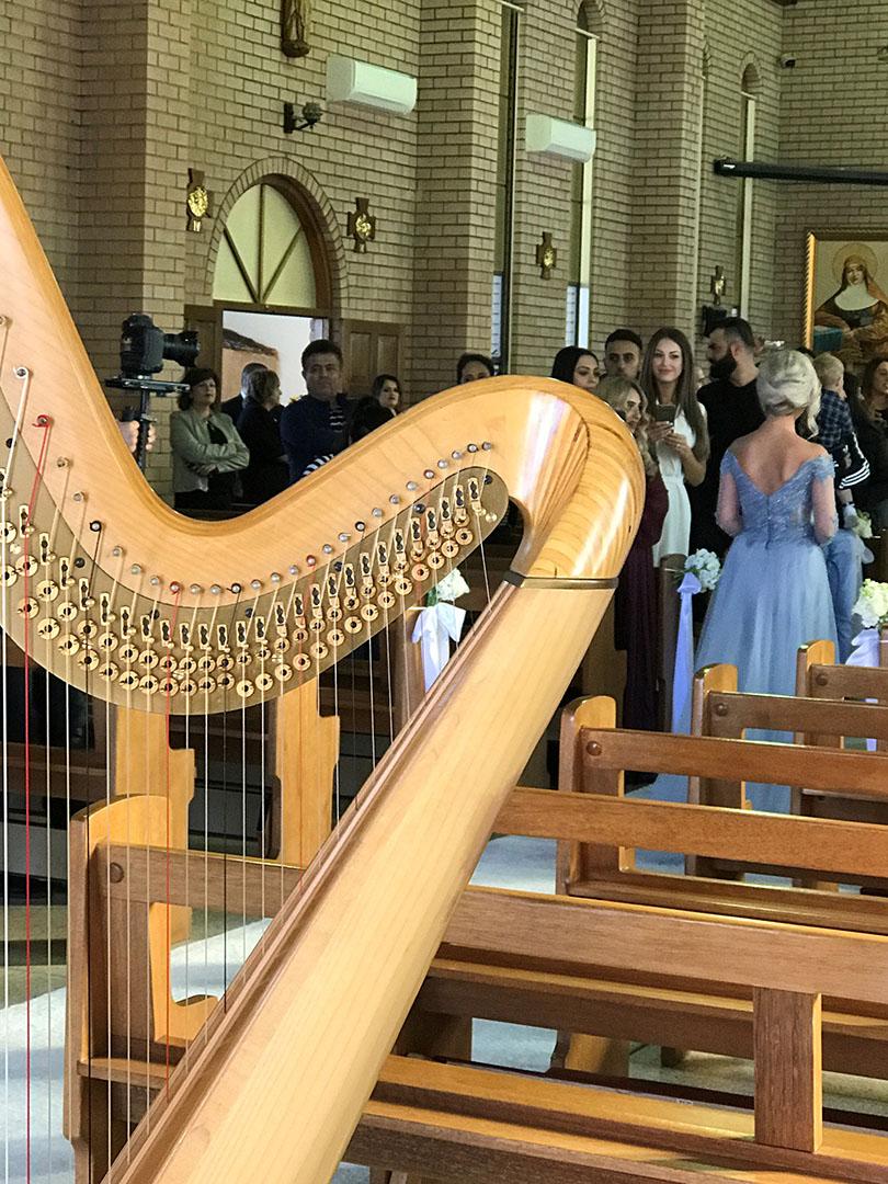 Wedding Performance 5