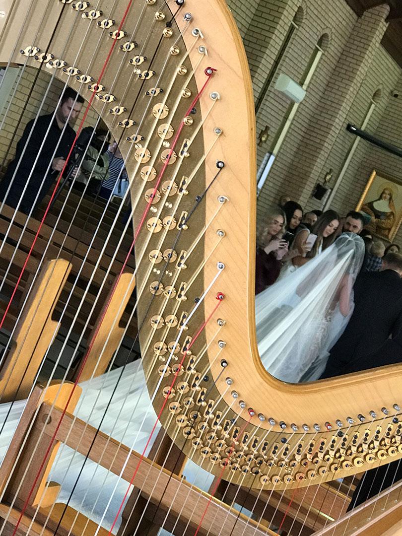 Wedding Performance 7