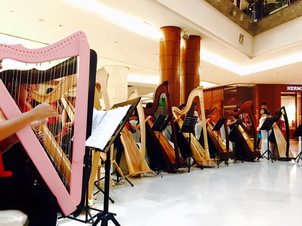 Harp Journey 16